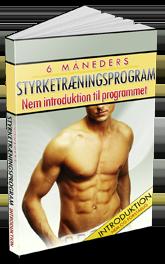 Introduktion til styrketræningsprogrammet